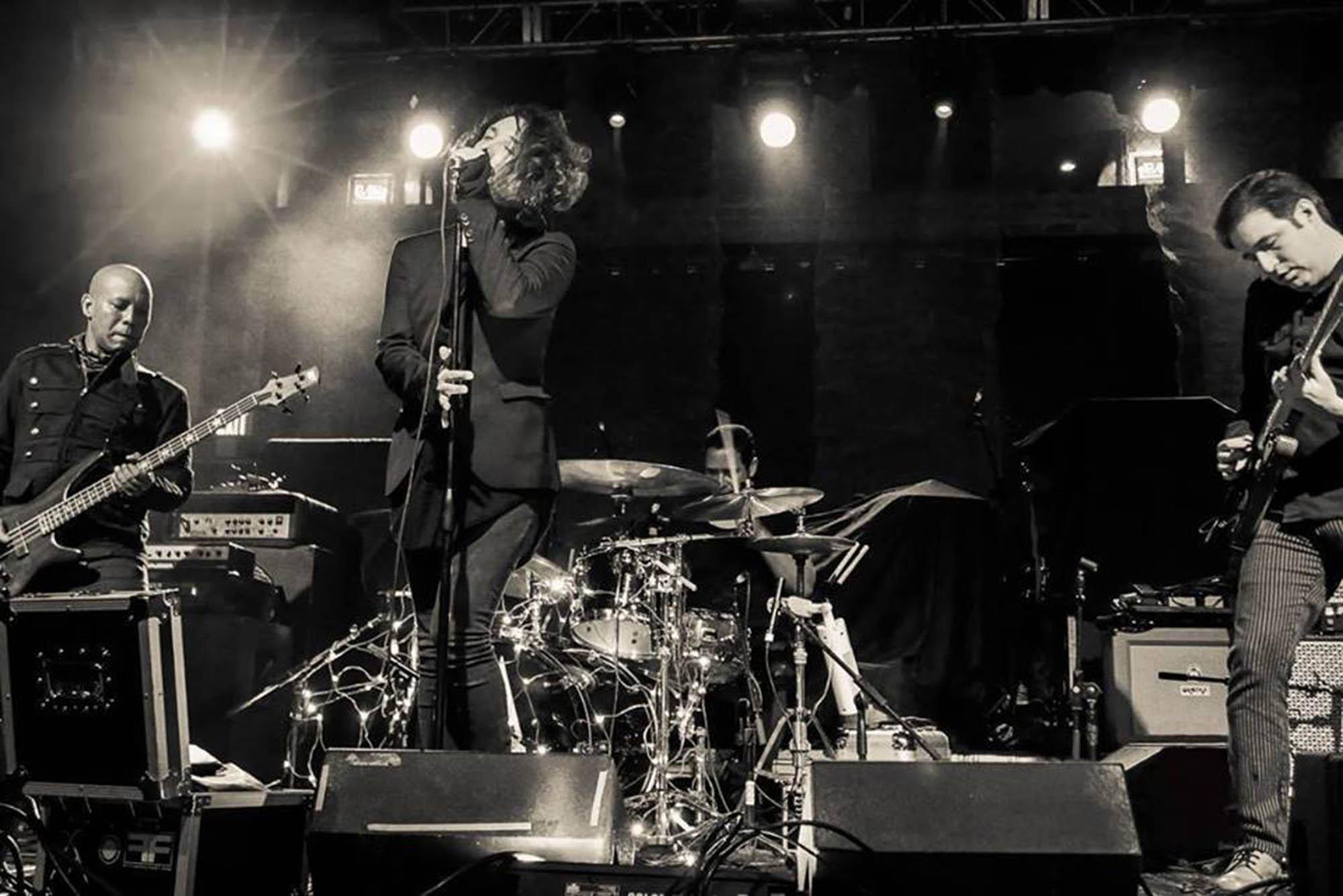 Astari Nite Live Photo_Dino Rio