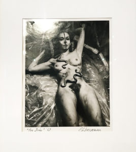 Carolee Schneemann Eye Body I at ICA