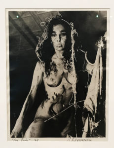 Carolee Schneemann Eye Body II at ICA
